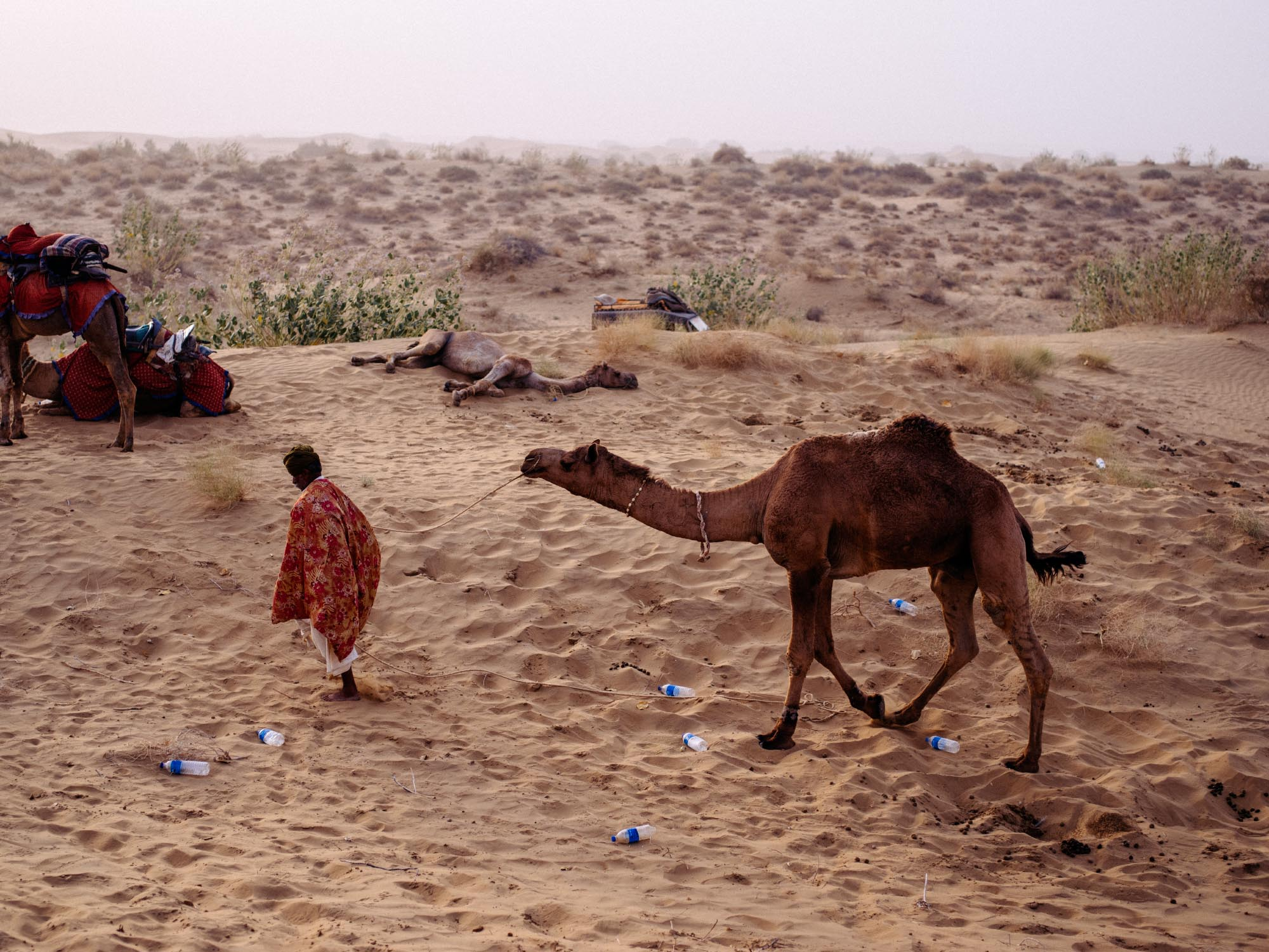 At a camel safari, all the empty water bottles got blown away and we thought the guides would leave them behind so we started to collect them. Fortunately, they also picked every last bit of trash. Great job, guys!