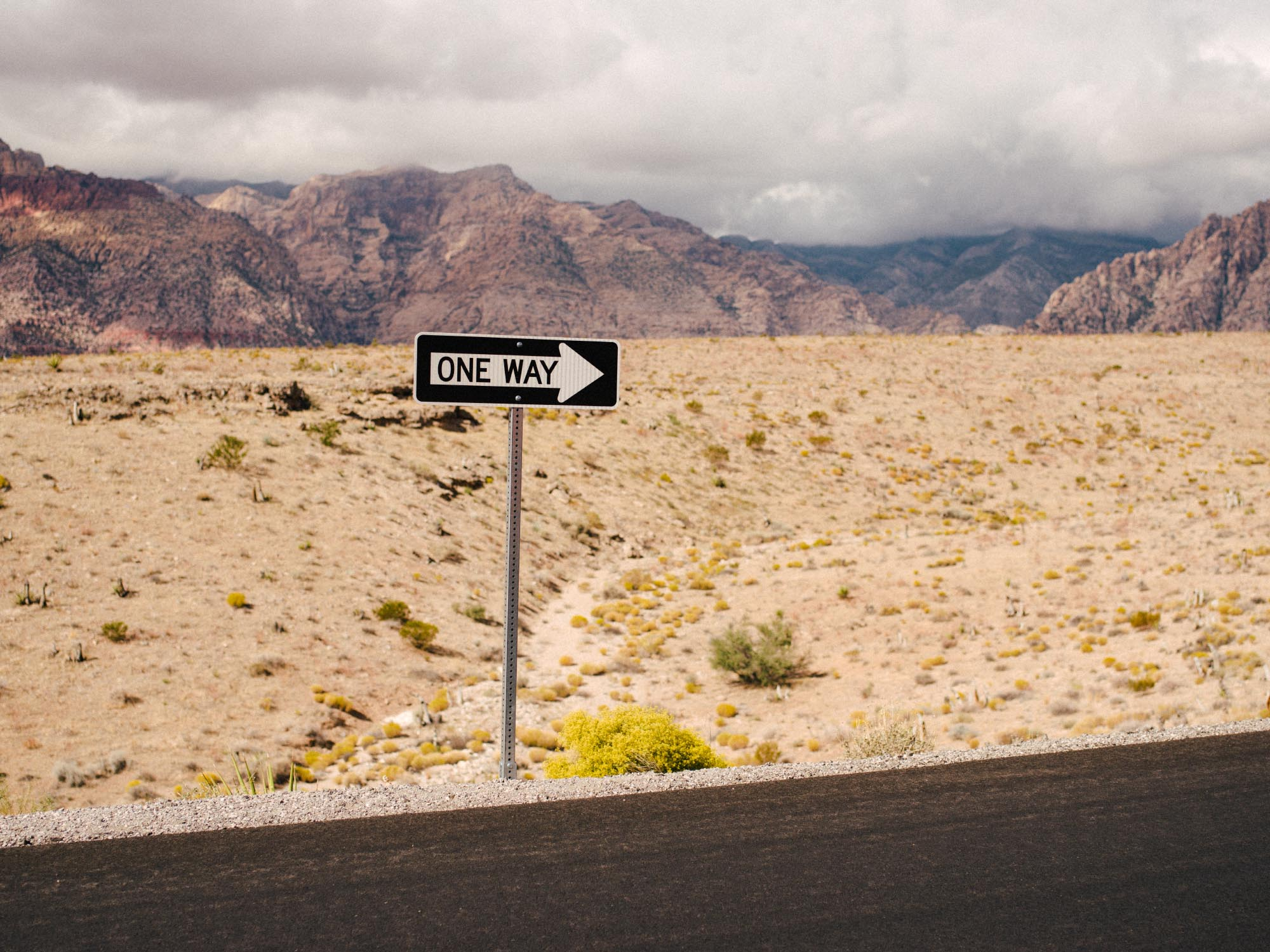 Driving in America? Easypeasy.
