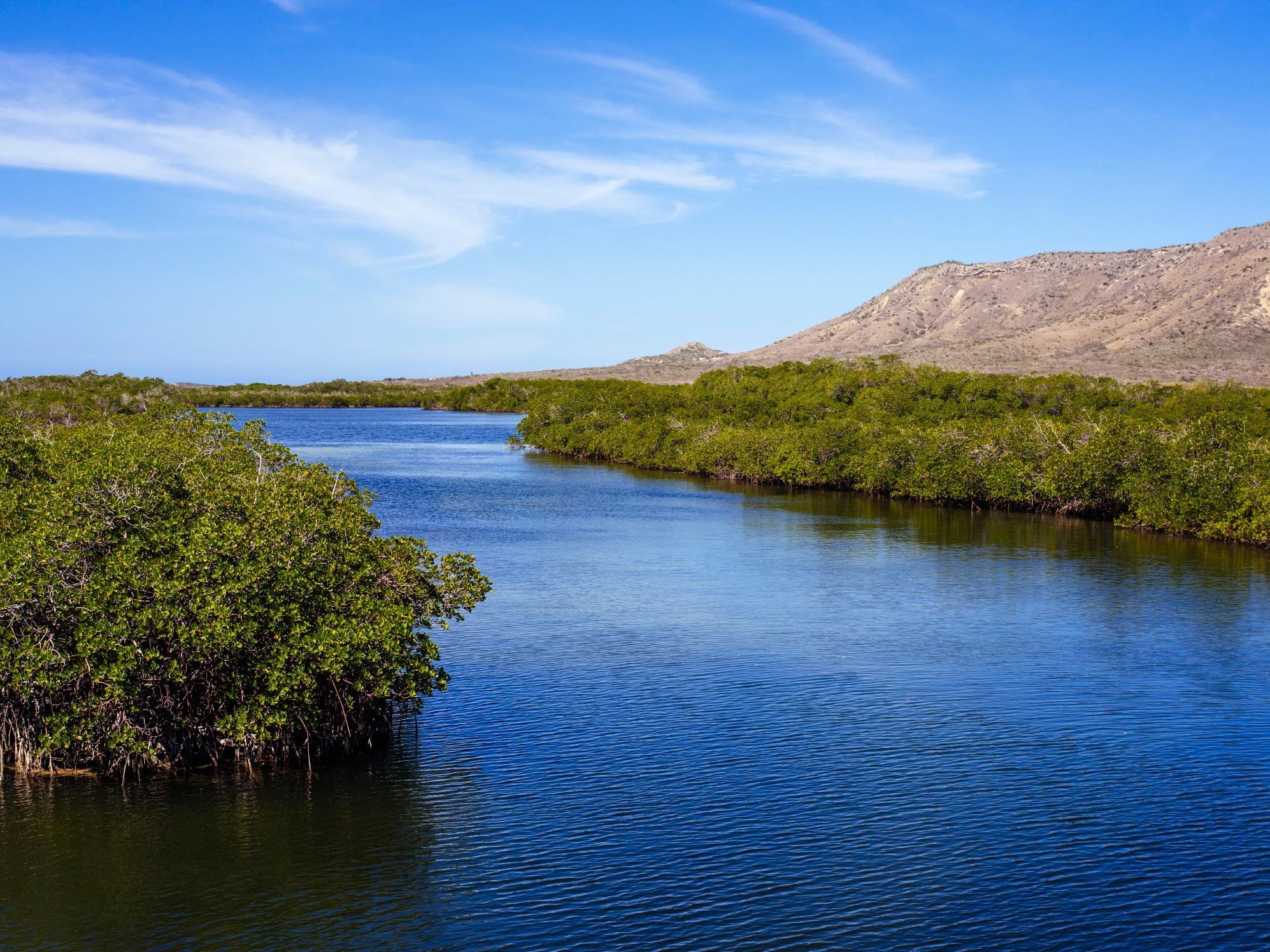off-the-beaten-path-montecristi-mangroves.jpg