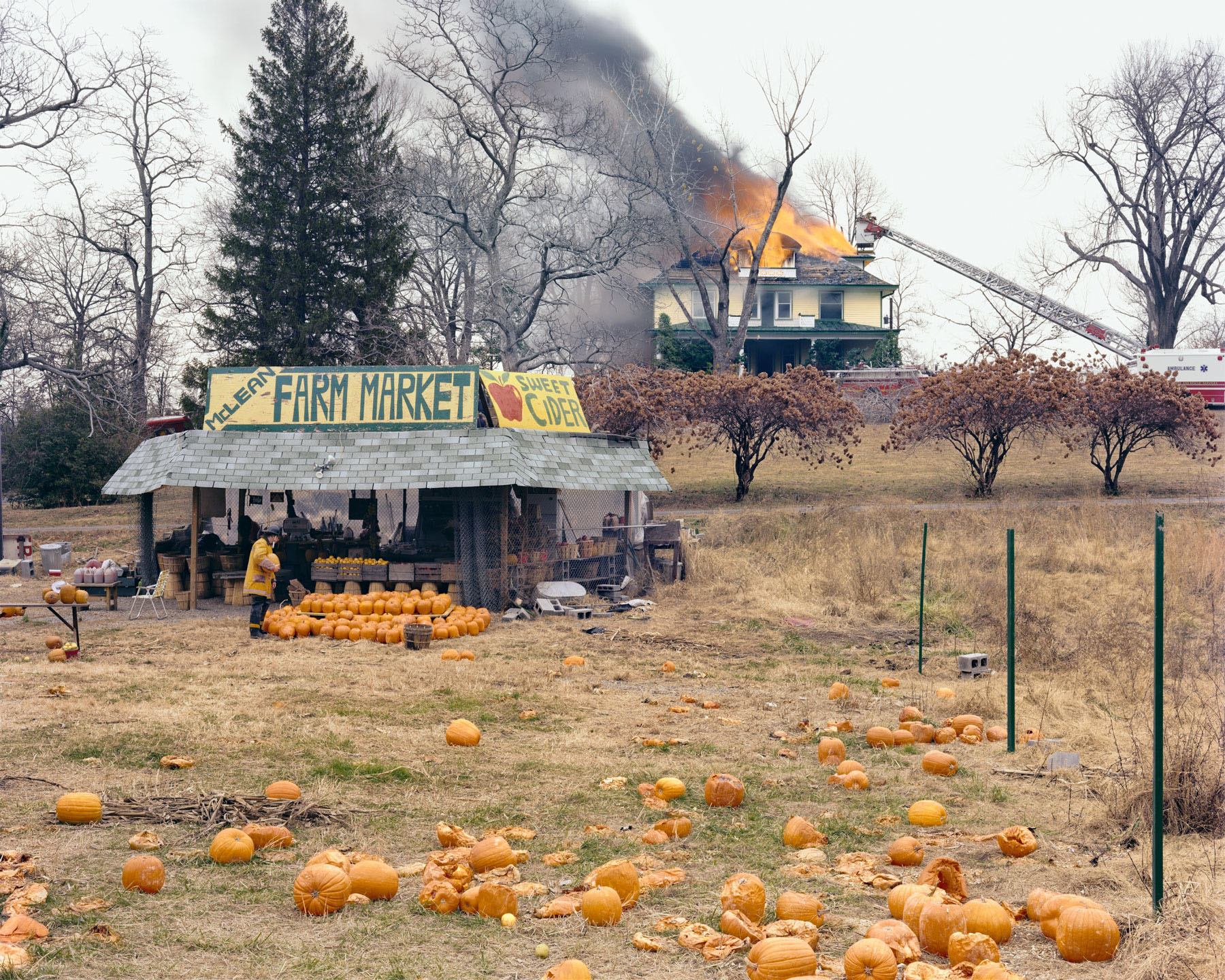 McLean, Virginia. © Joel Sternfeld