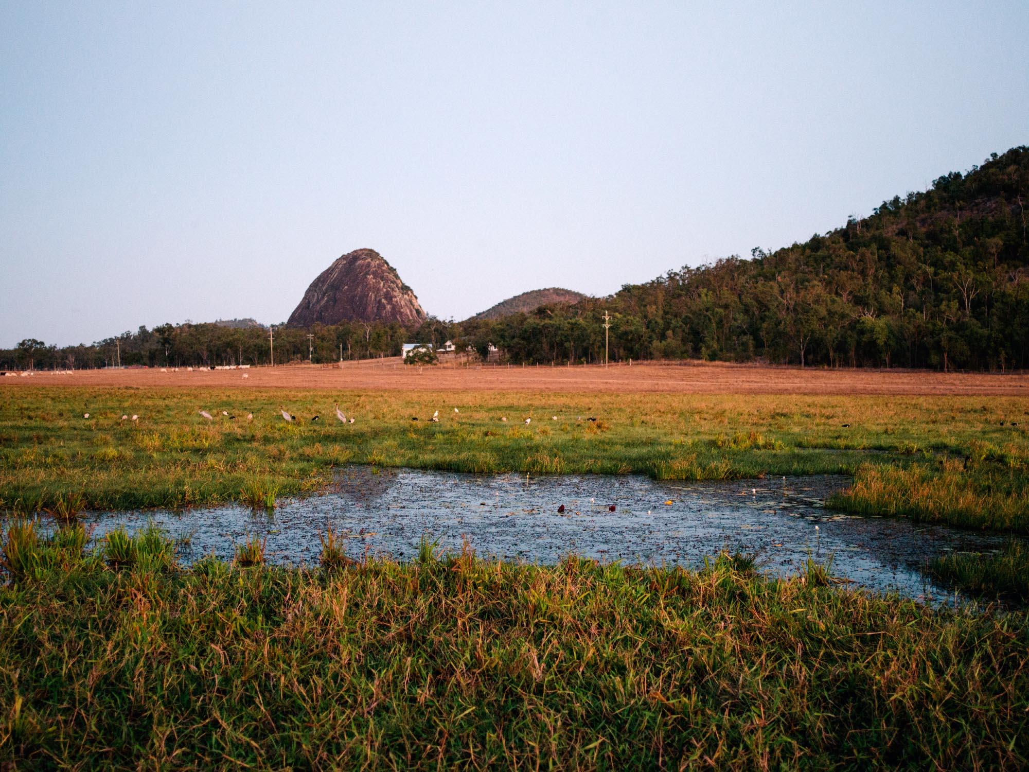 Rural area outside of Rockhampton, Australia.