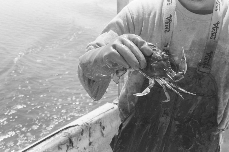 photography-feature-jonathon-moll-crab-fisherman-05.jpg