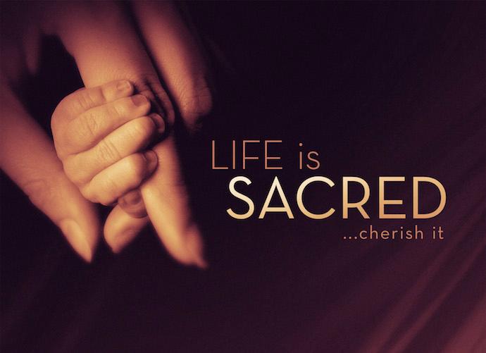 life_is_sacred_std_t-copy.jpg