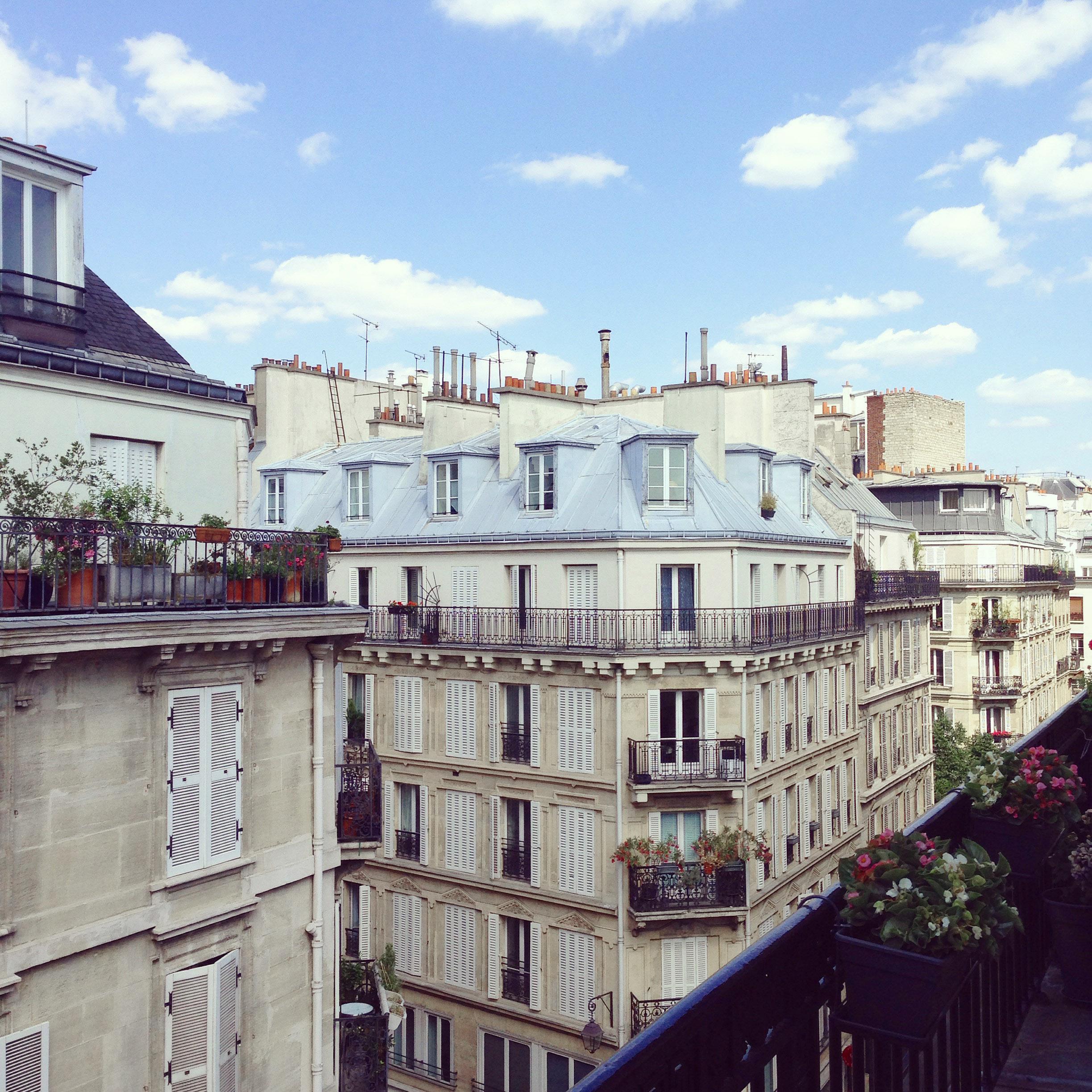 Lozidaze_Paris-Rooftops_01