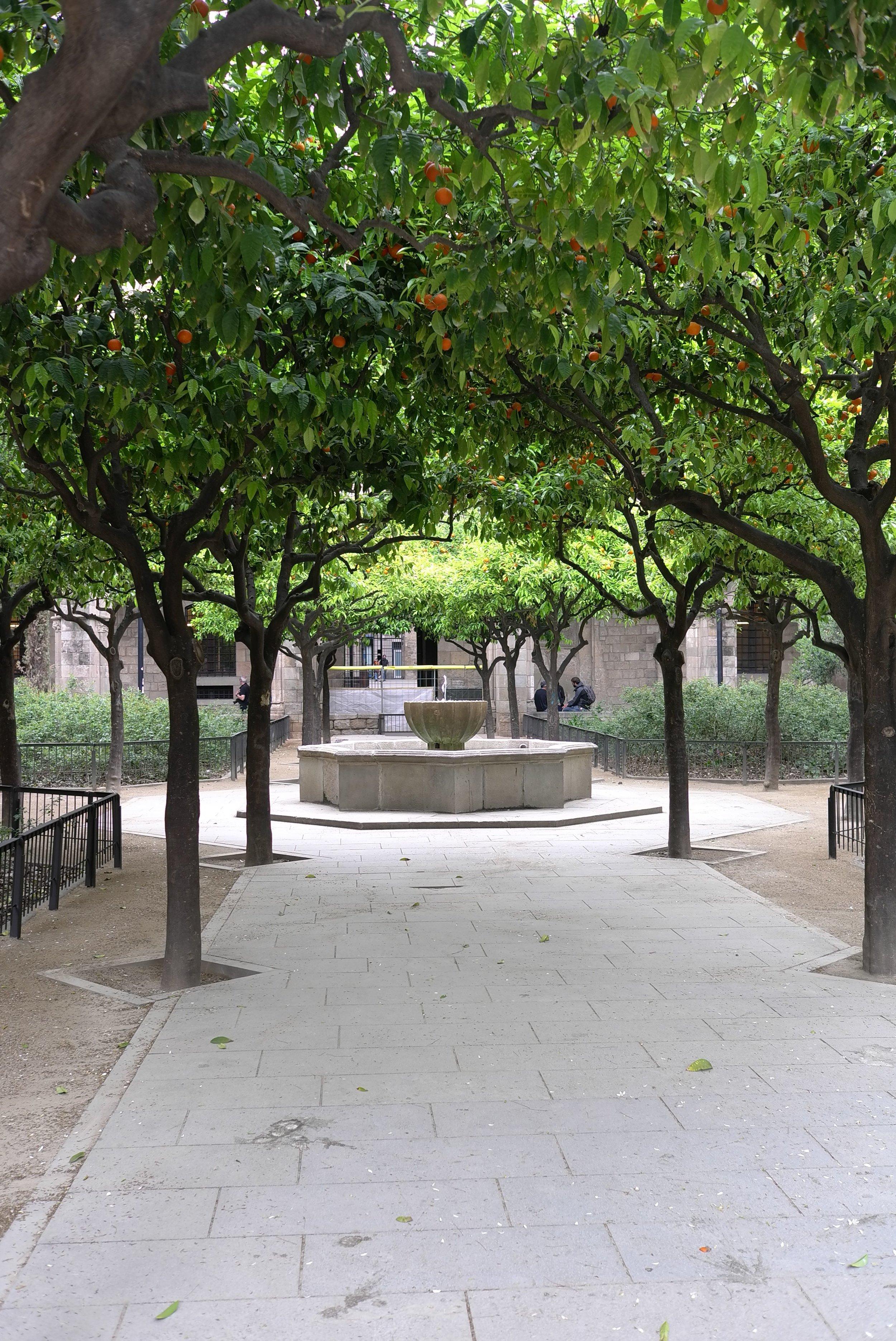 Lozidaze_Barcelona-Courtyard_01