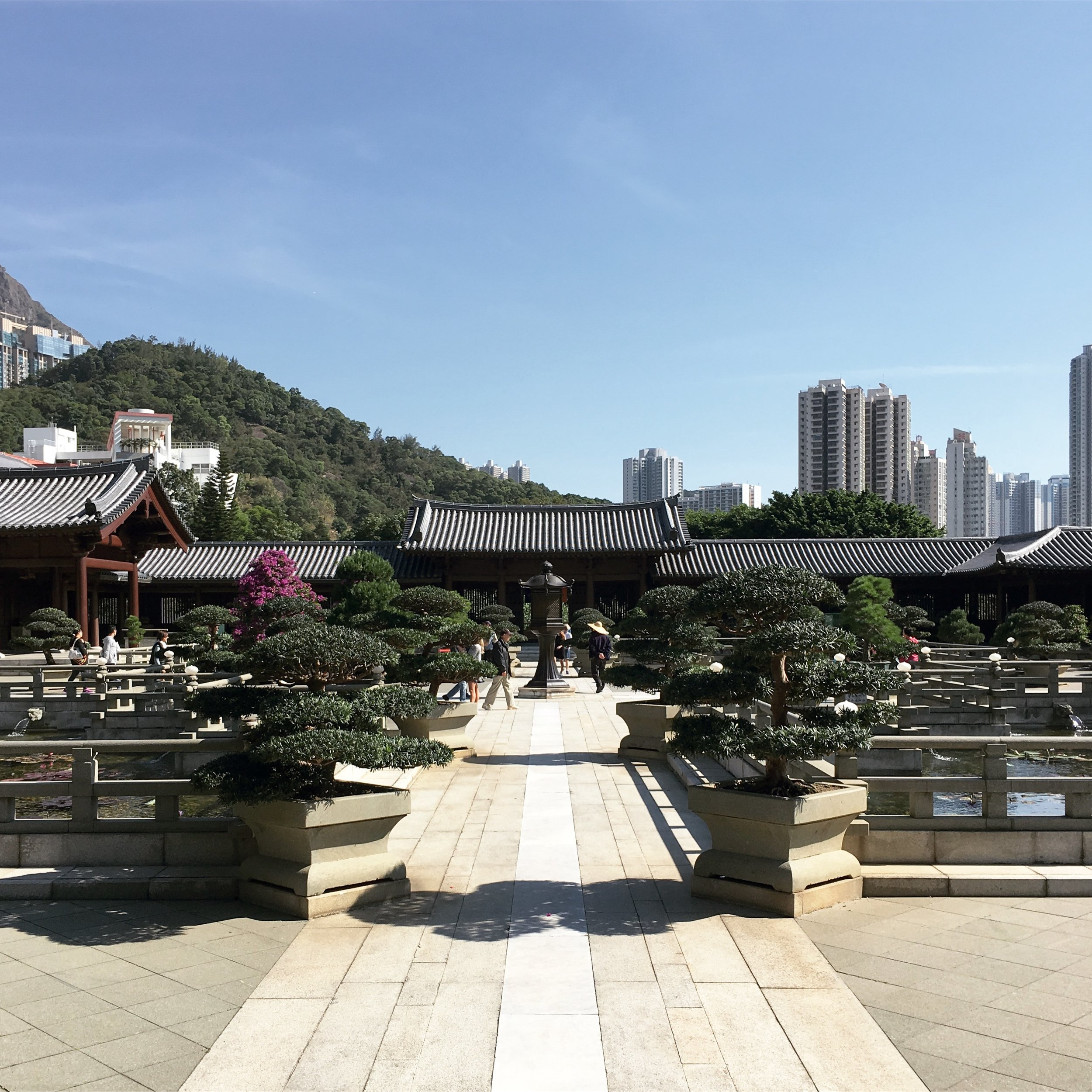 Lozidaze_Hong-Kong_Chi-Lin-Nunnery_01
