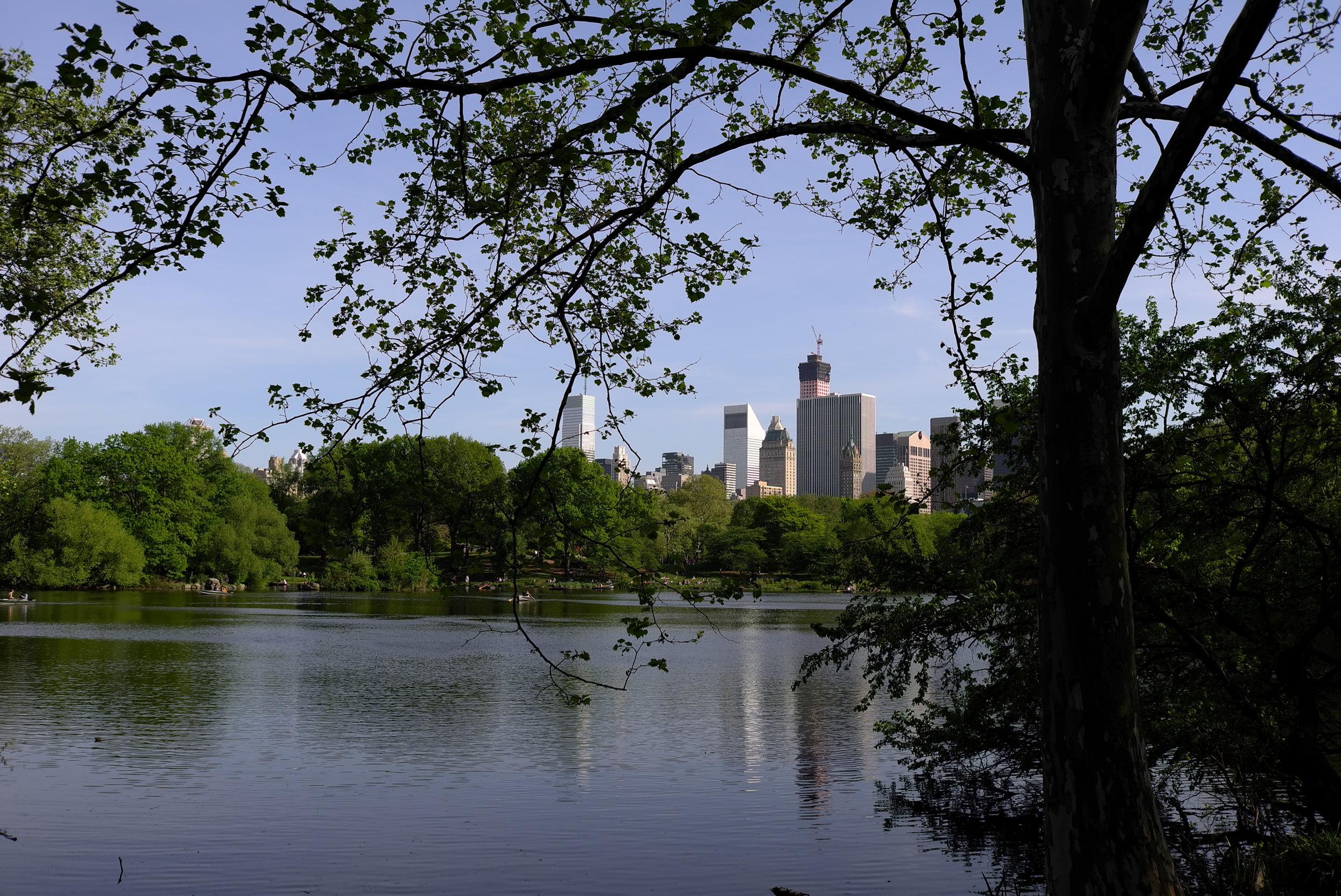Lozidaze_NYC_Central-Park