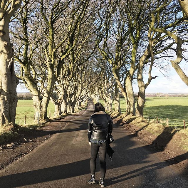 Took something special, AKA The Dark Hedges, to get me out of the car in the freezing cold. Wore about 10 layers underneath that shearling leather jacket... needed at least another 2 😂 Check out the blog for my latest post featuring some faves from Belfast and NI, link in bio.  #lozidaze #northernireland #darkhedges #GoT #discoverni