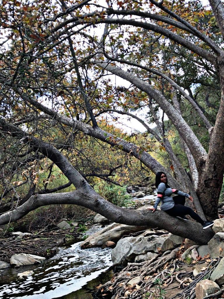 Elfin Forest,  Escondido CA