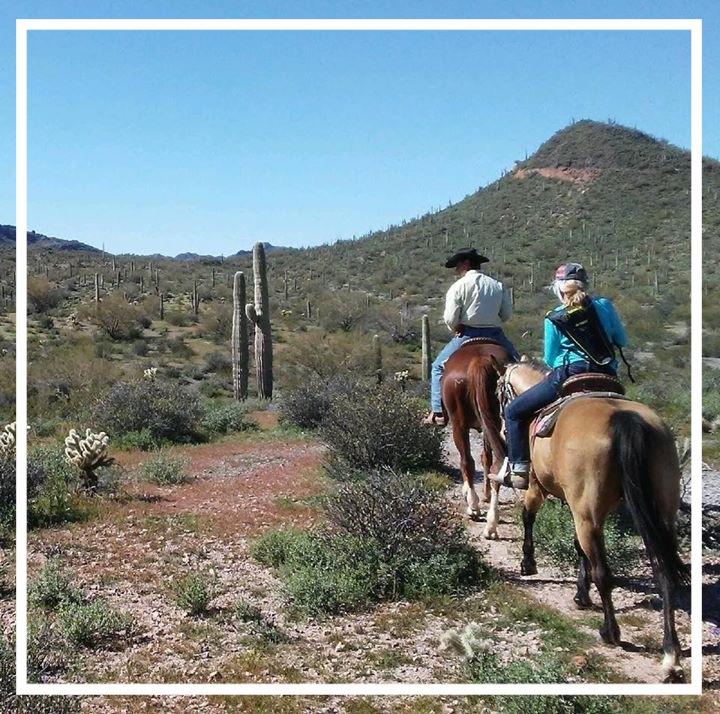 trail ride fav 1.JPG