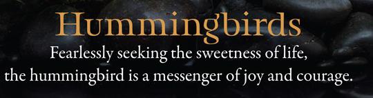 Hummingbird-snip.jpg
