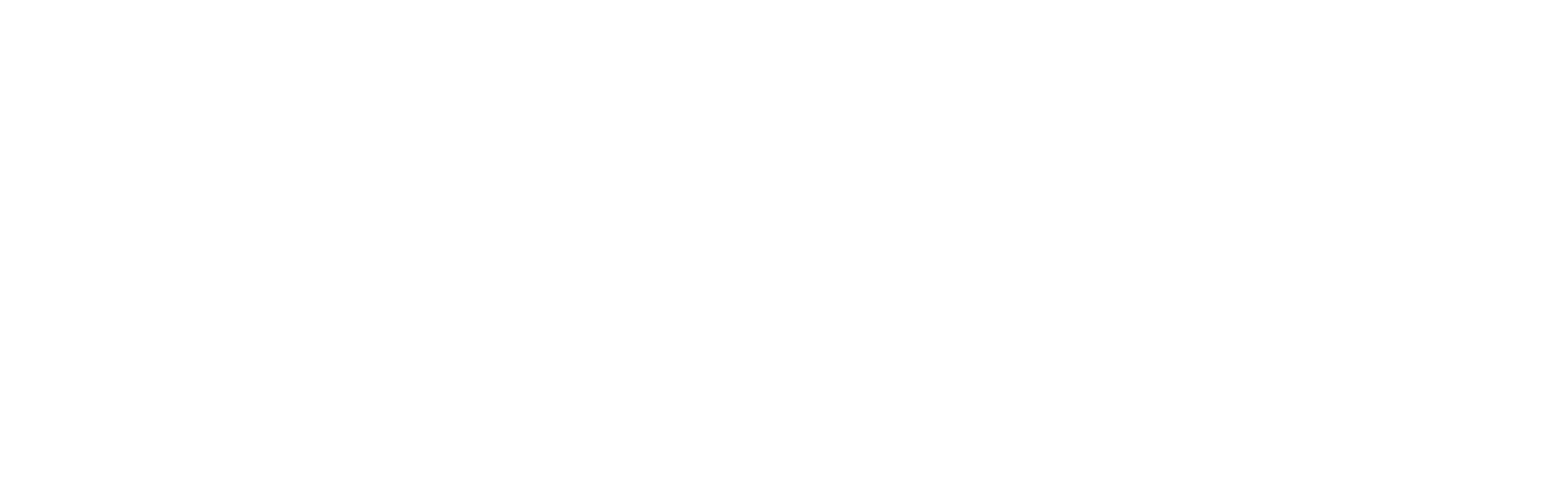 horizontal logo white new.png