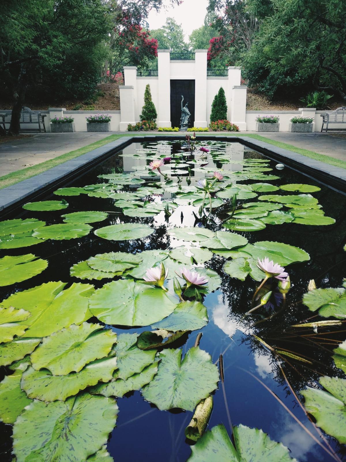 Birmingham Botanical Gardens in all its glory.