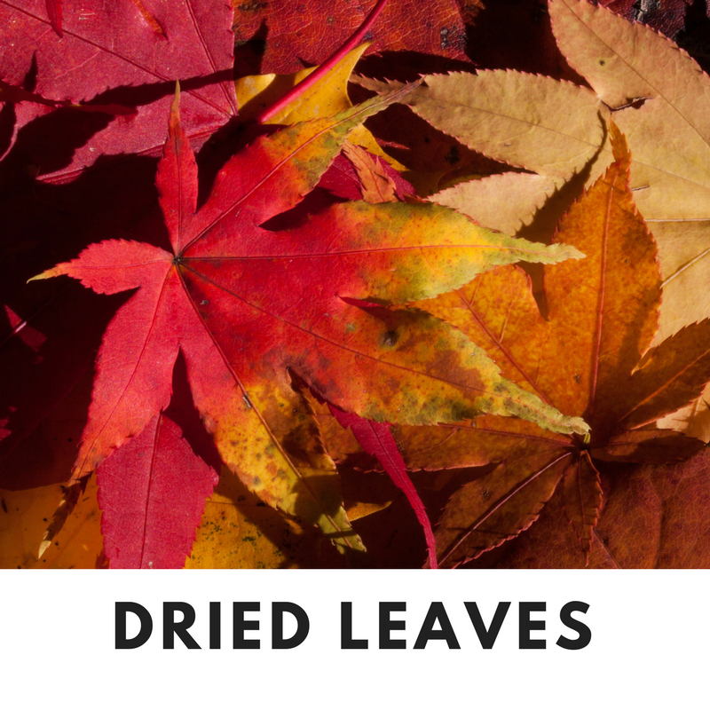 Dried Leaves Fall Scent