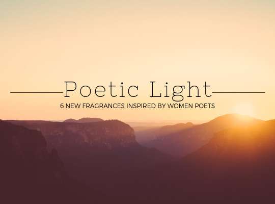 small Poetic Light squarespace homepage.png