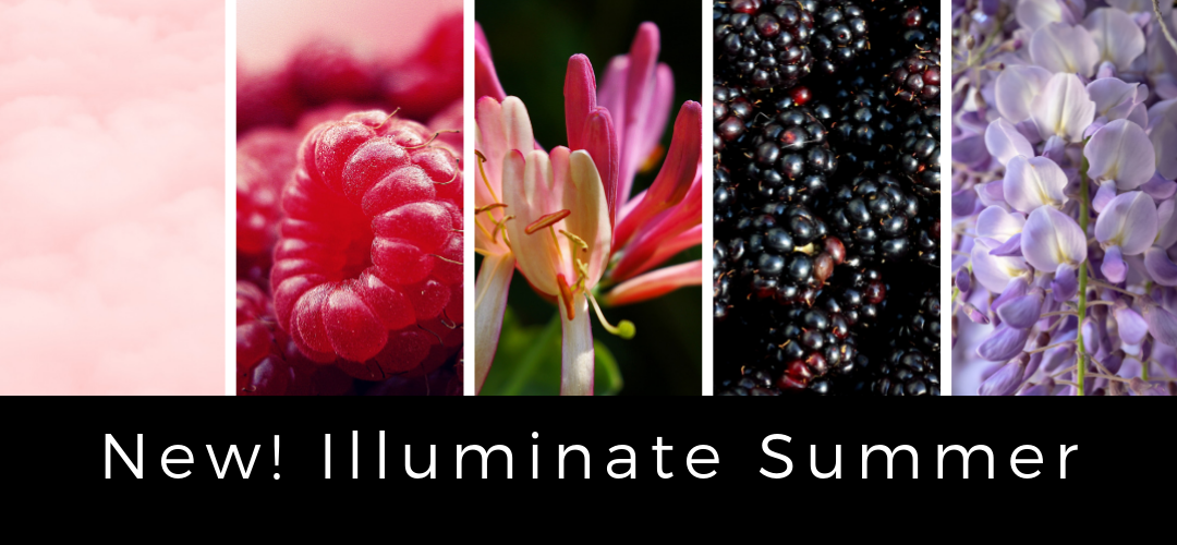 Illuminate Early Summer 2019 squarespace homepage.png
