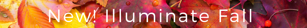 Illuminate fall header squarespace.png