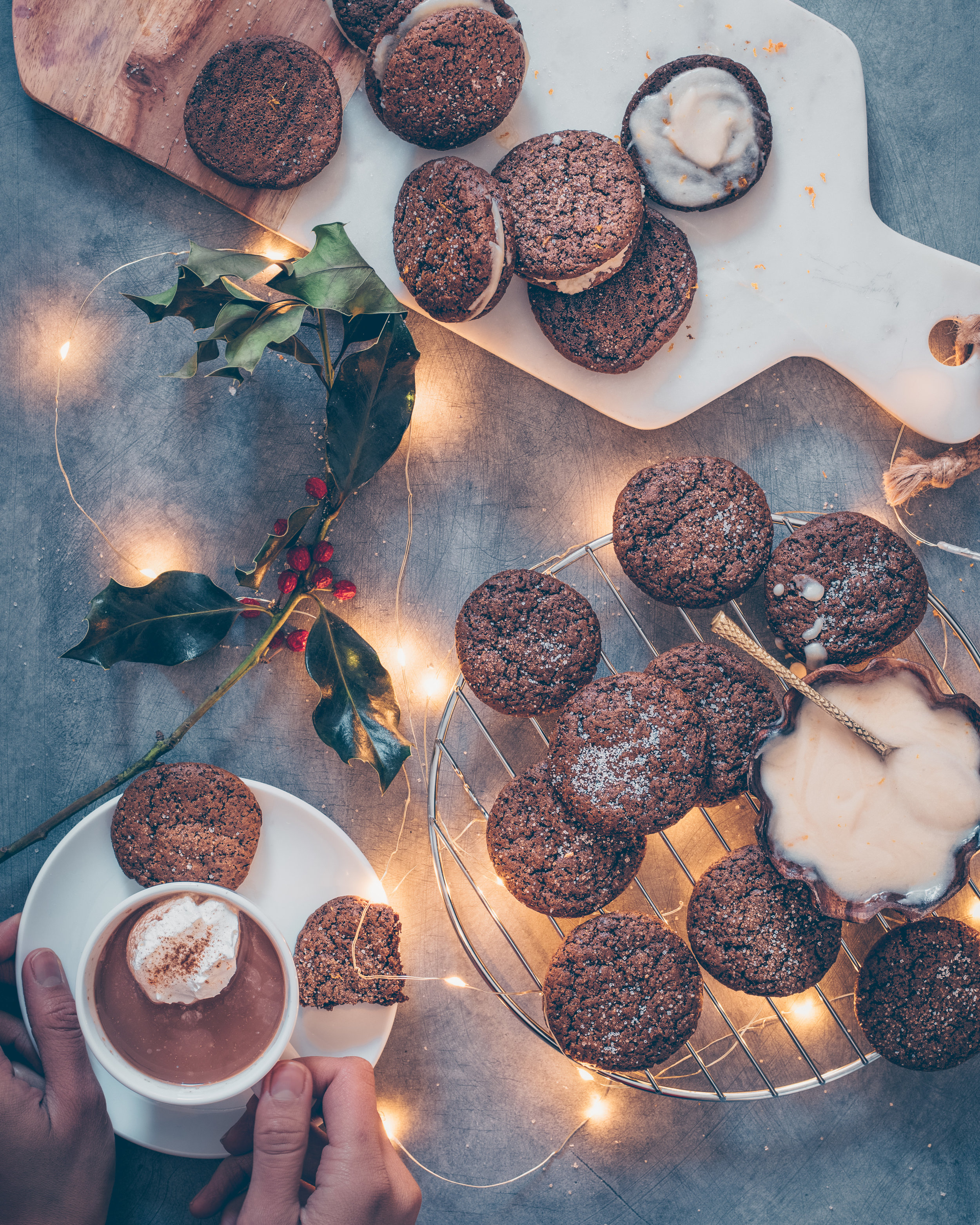 gingerbread cookies with hot cocoa - blue matte.jpg