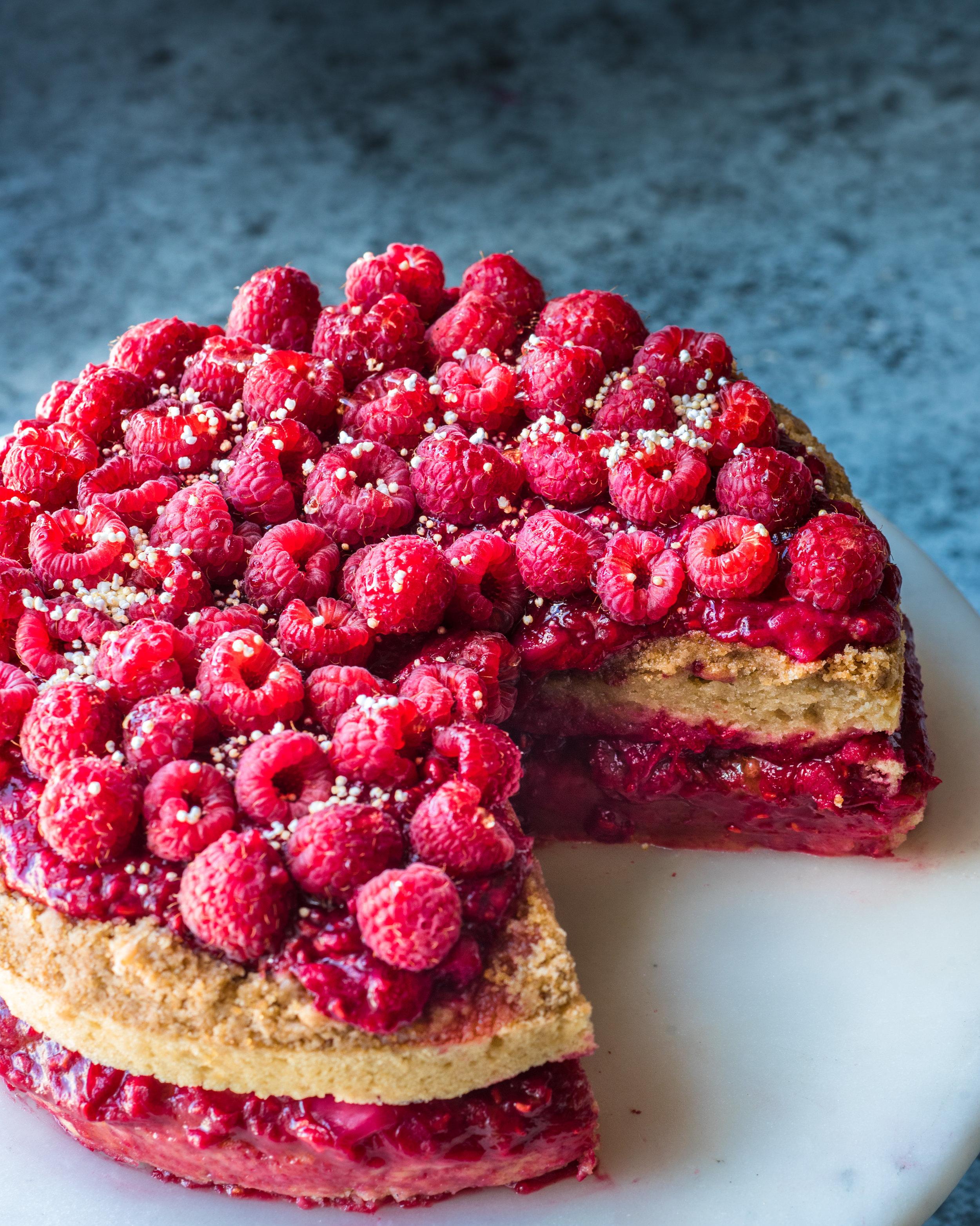 Vegan Raspberry Rhubarb Crumble Cake