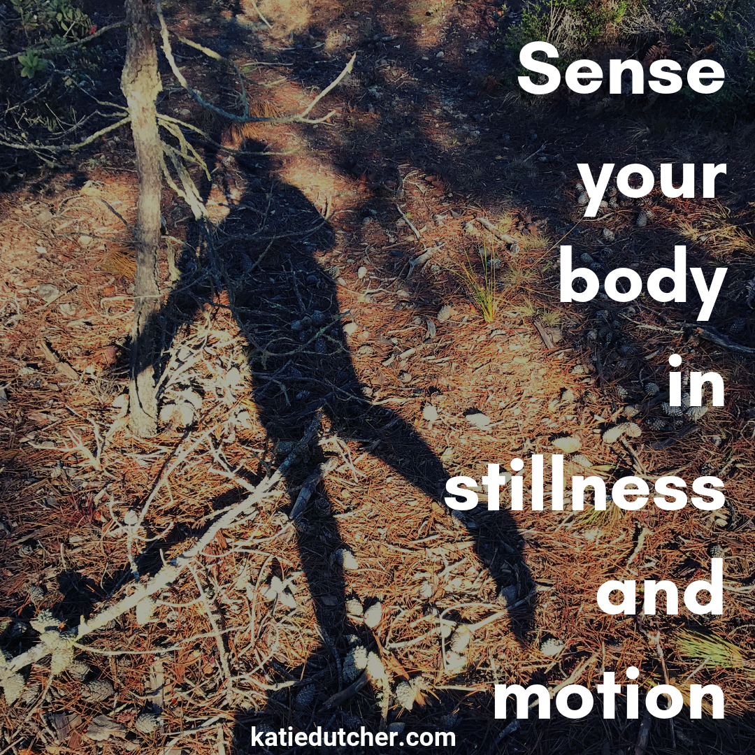 body in stillness and motion.png