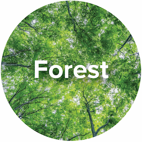 Ecosystem-Forest-Icon.jpg