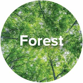 Ecosystem-Forest-Icon.jpg