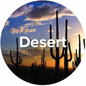 Ecosystem-Desert-Icon.jpg