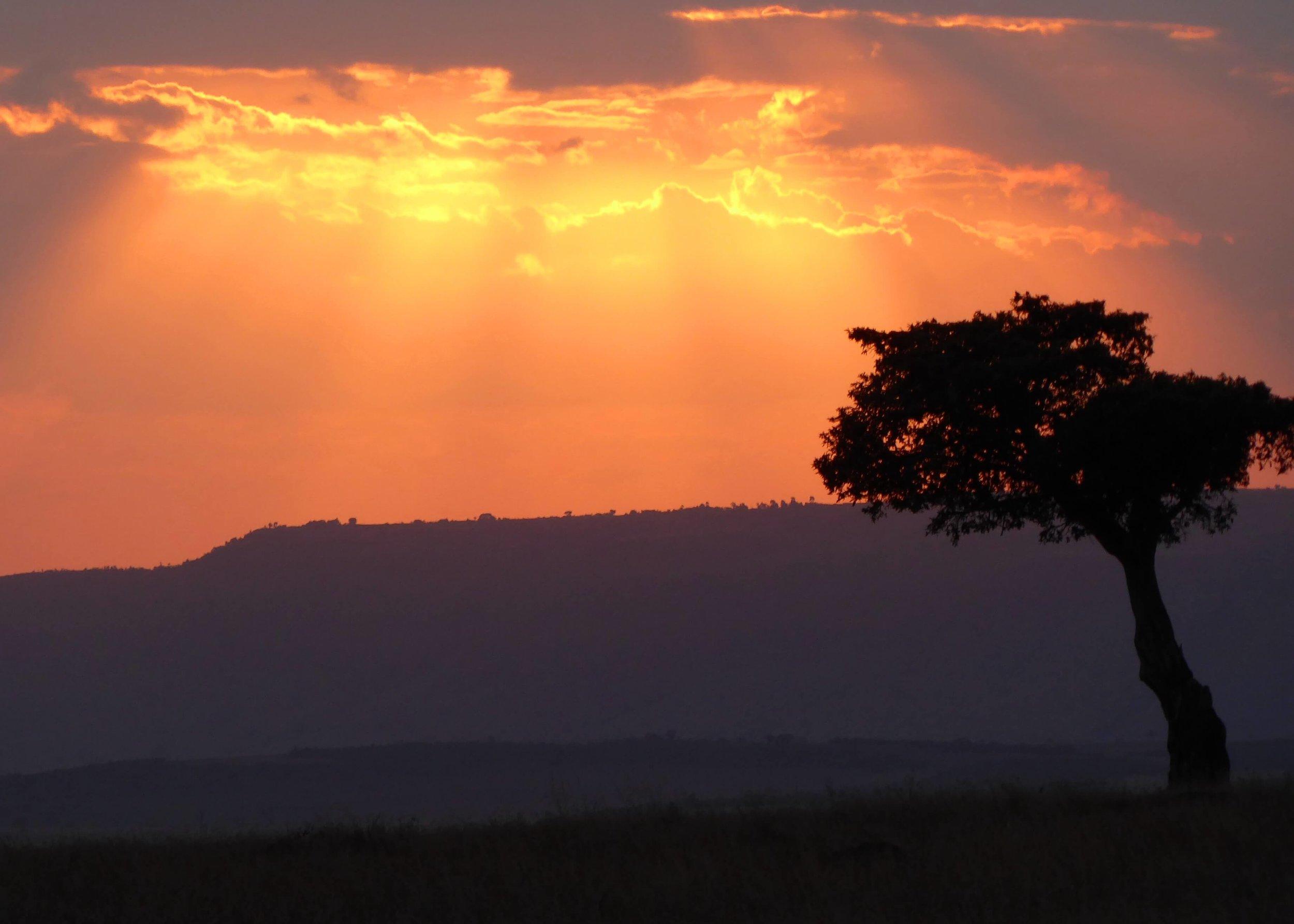 Masai Mara Sunset.JPG