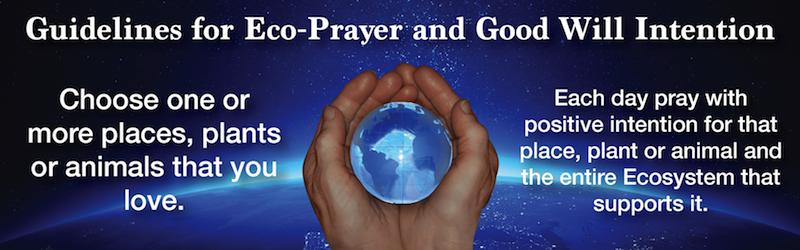 Eco-Prayer Banner