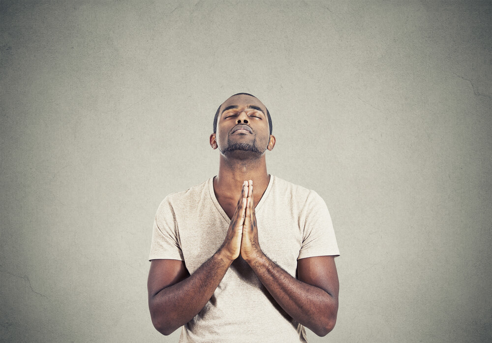 2. Pray - Each day pray with positive intention for that place, plant or animal and the entire Ecosystem that support it.