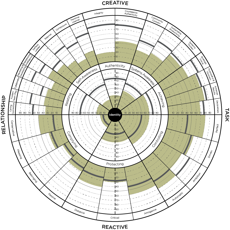 leadership circle profile graph