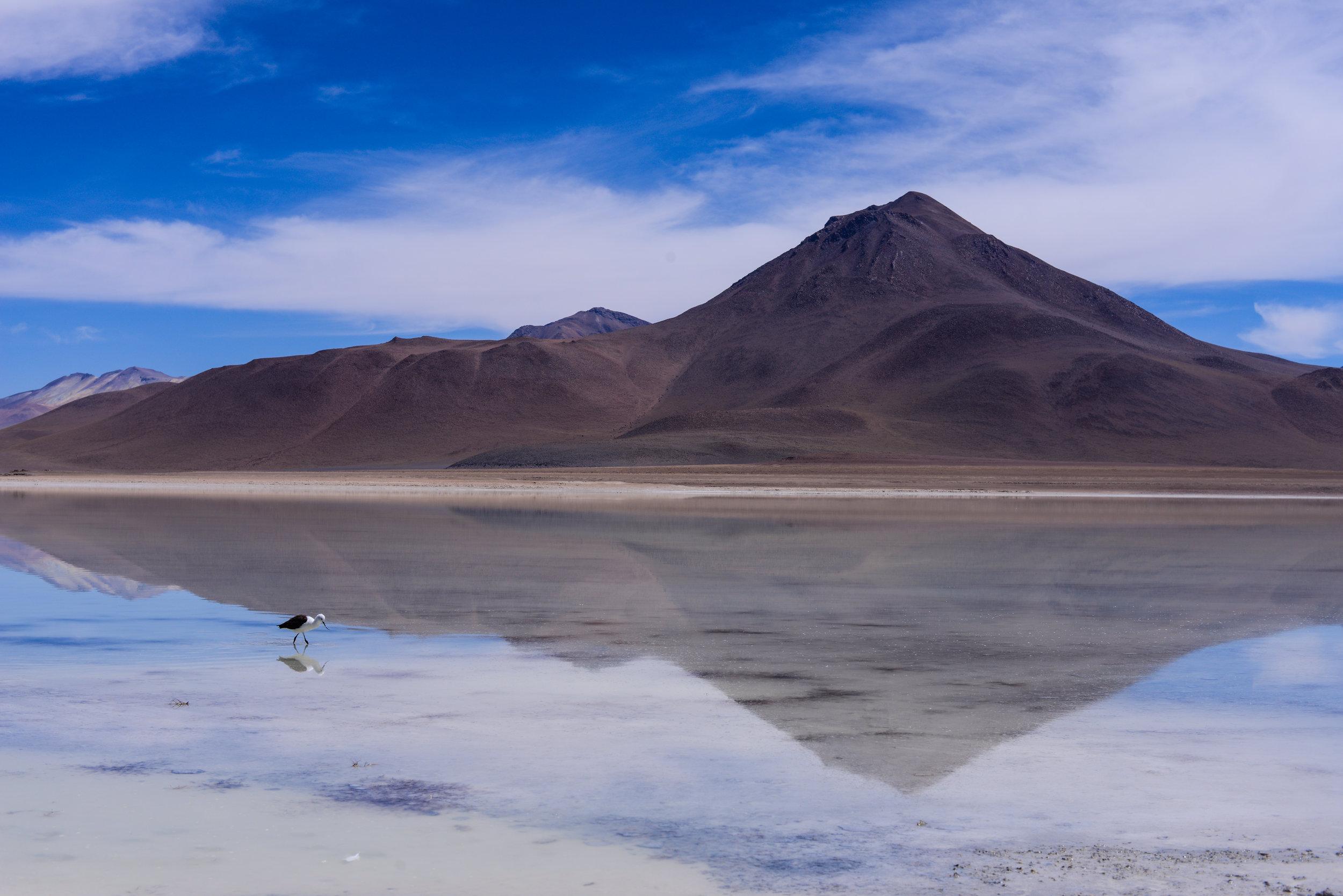 adriendebontin_Bolivia2012-700.jpg