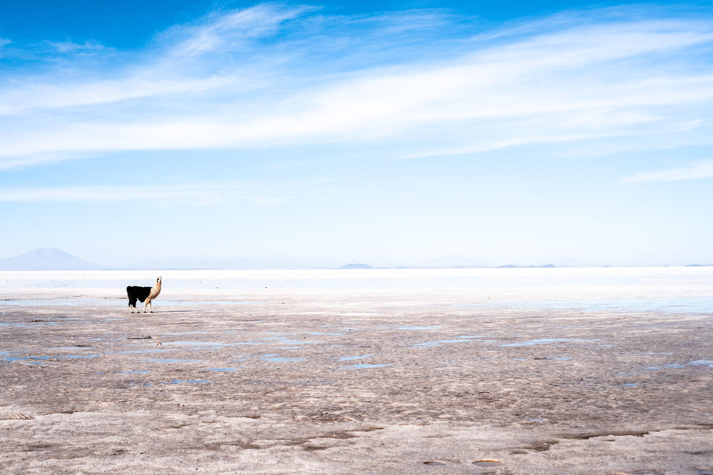 adriendebontin_Bolivia2012-1399.jpg