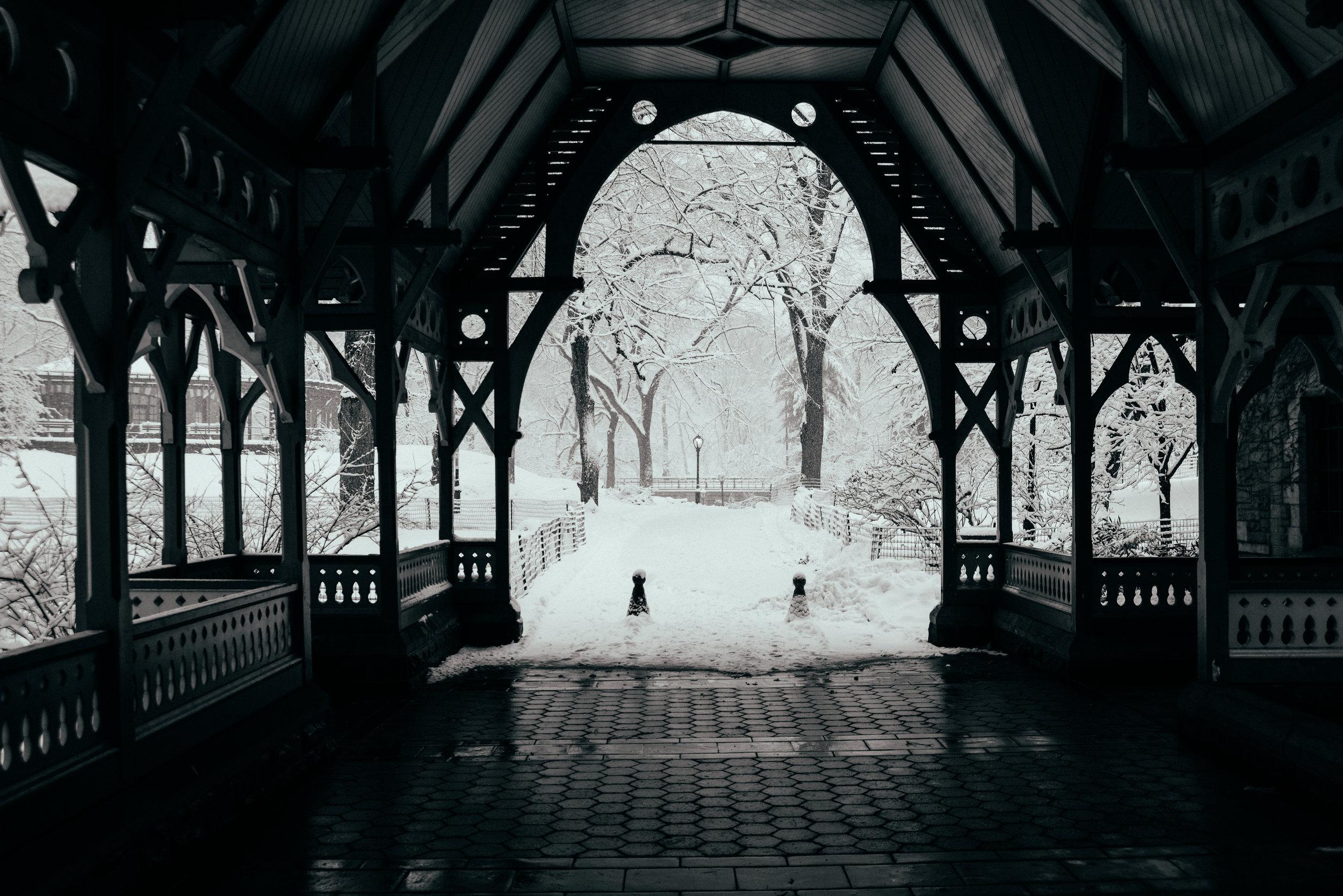Winter_Storm-23.jpg