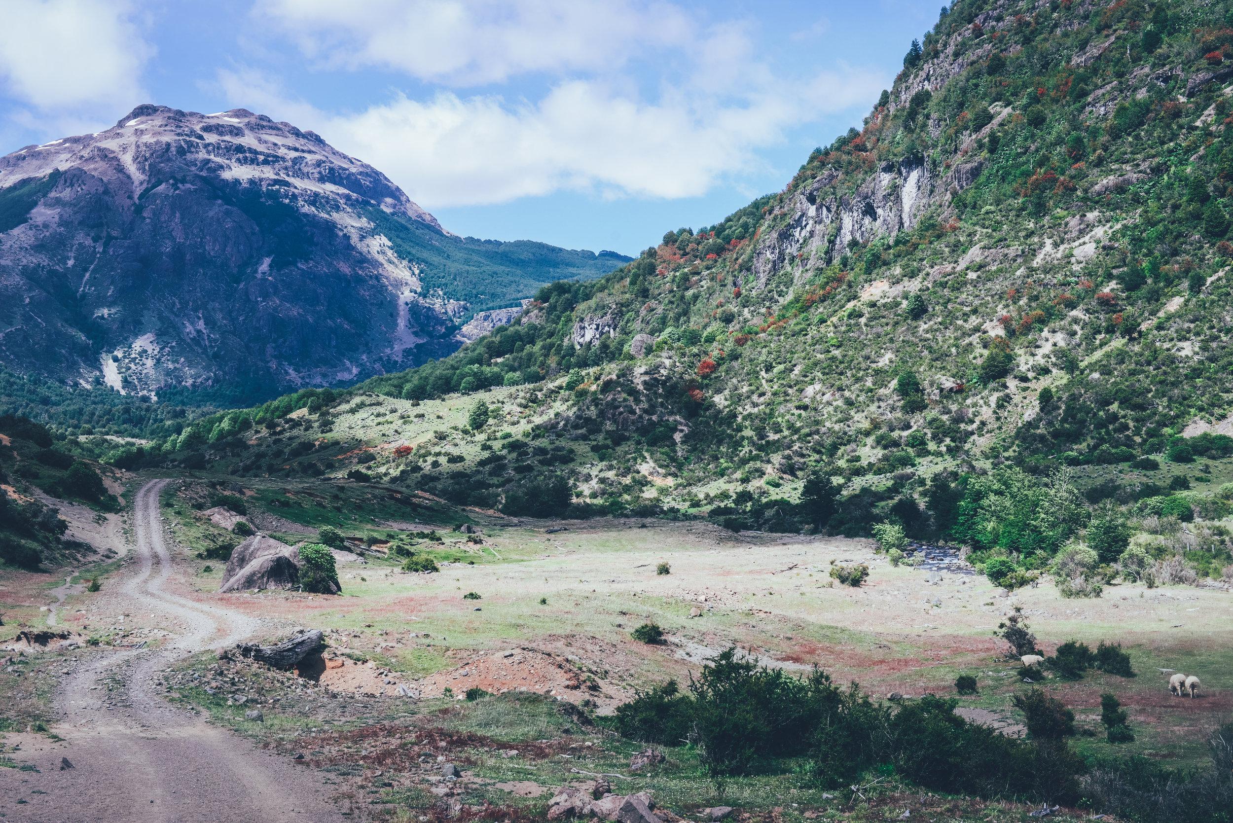 CBS_Patagonia_deBontin-65.jpg