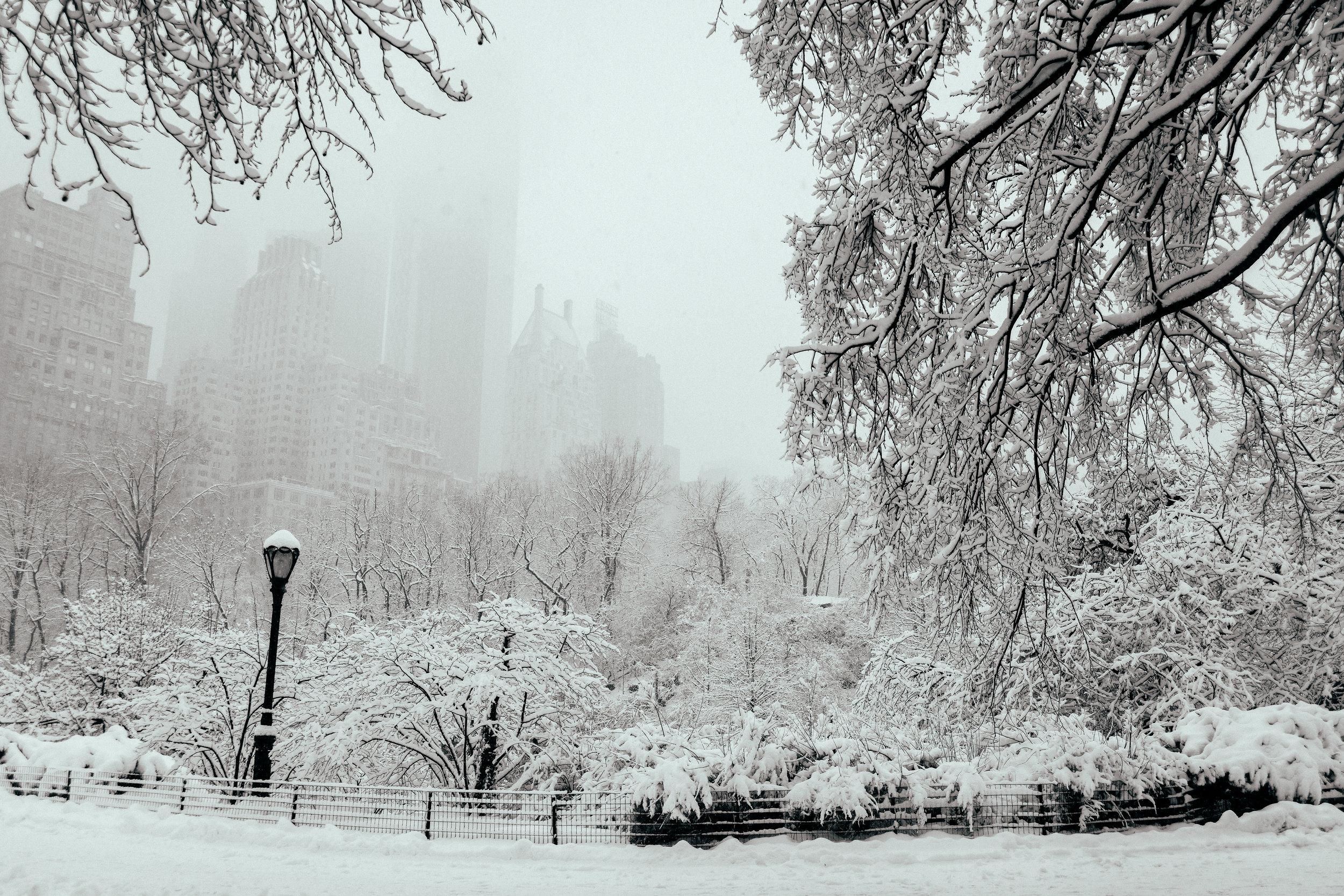 Winter_Storm-55.jpg