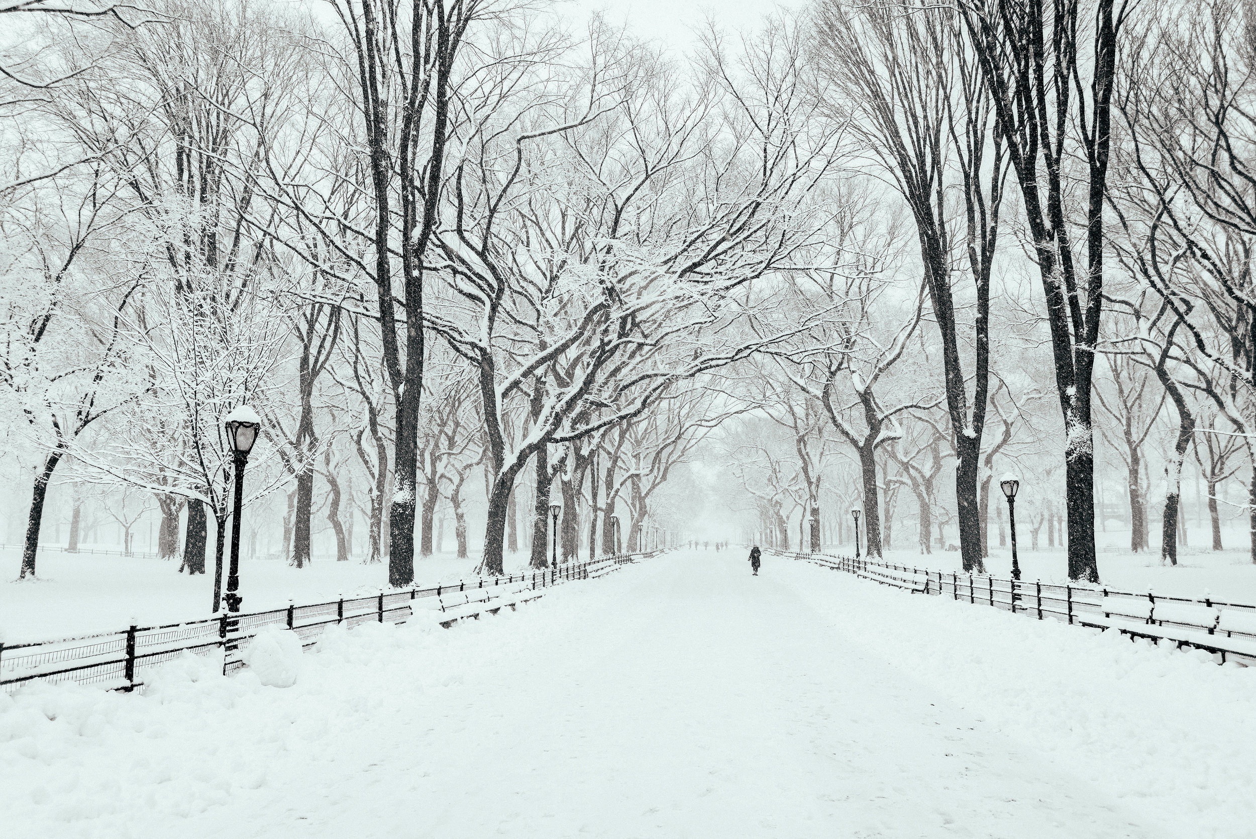 Winter_Storm-17.jpg