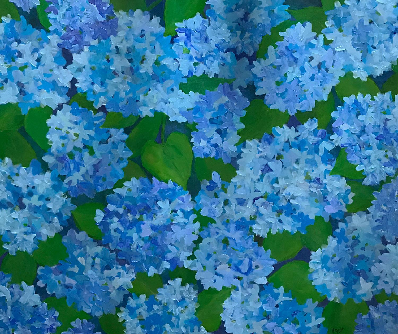 Blue Hydrangeas III