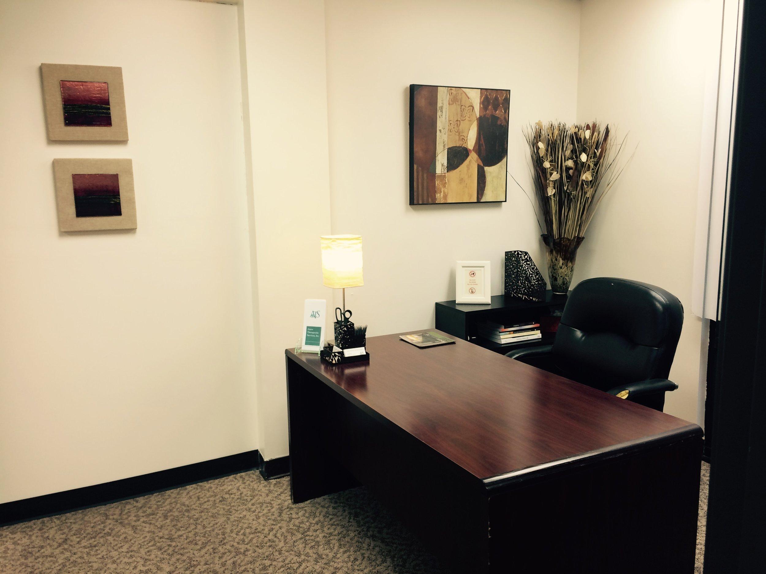 Therapist Office Lanc..JPG