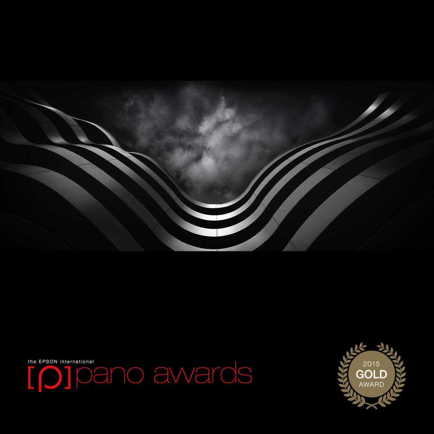 """wings"" 2nd place, 2015 Epson International Pano Awards"
