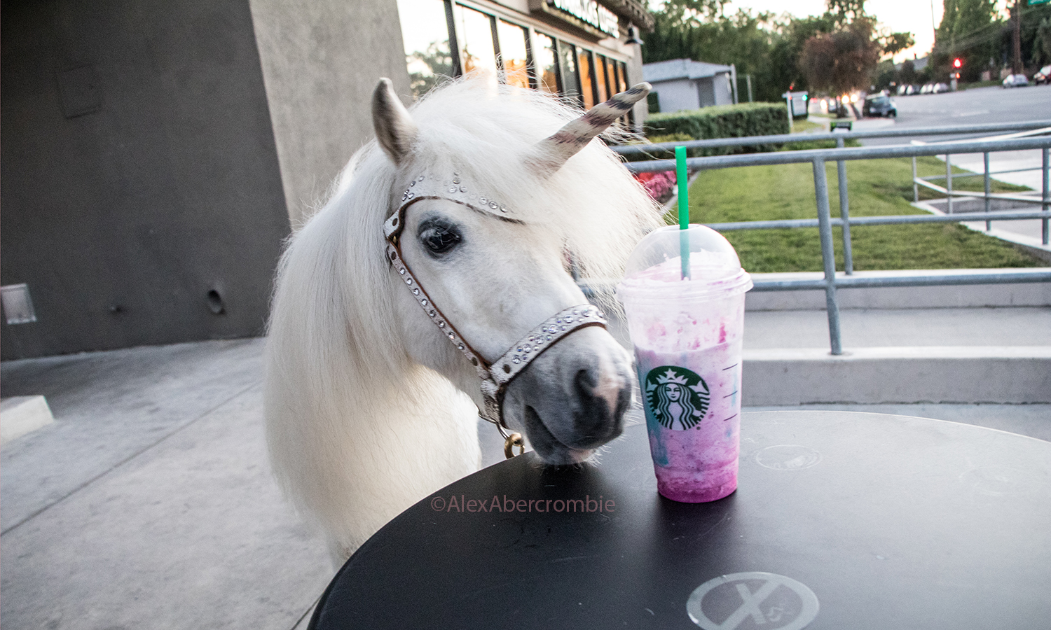 About to try Starbucks Unicorn Frappuccino in Burbank California last night!