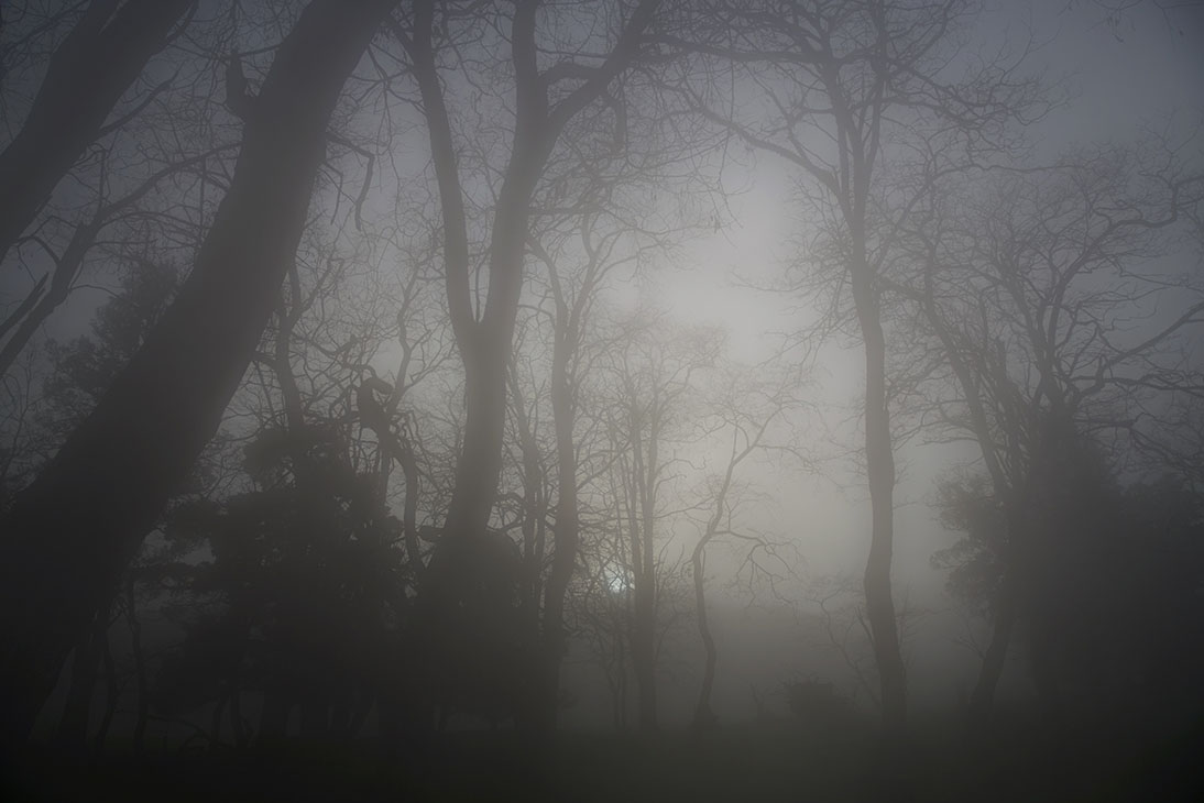 Running Through My Veins.jpg