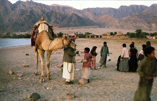 bedouin 6.jpg