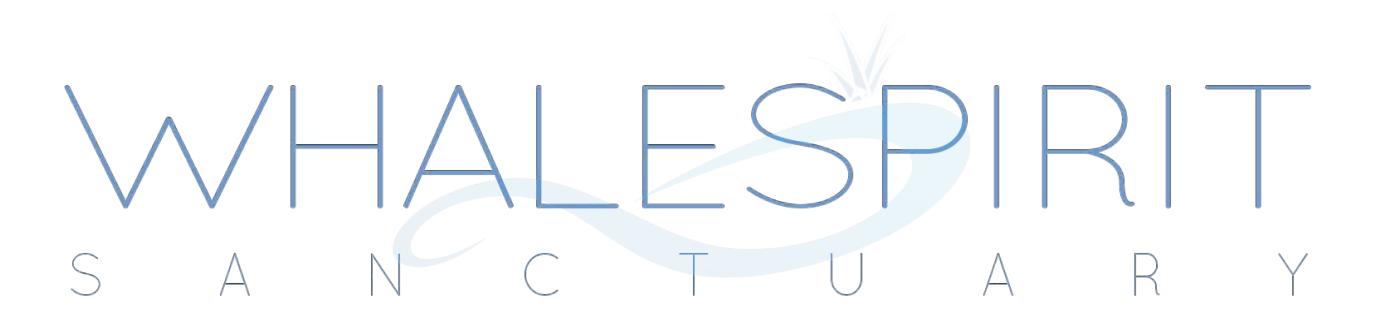 WhaleSpirt Logo.png