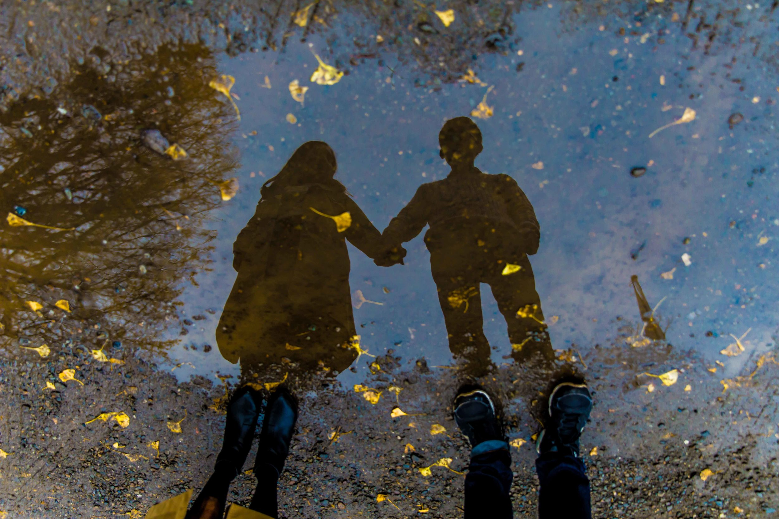 Reflections, Tokyo