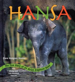 hansa.png