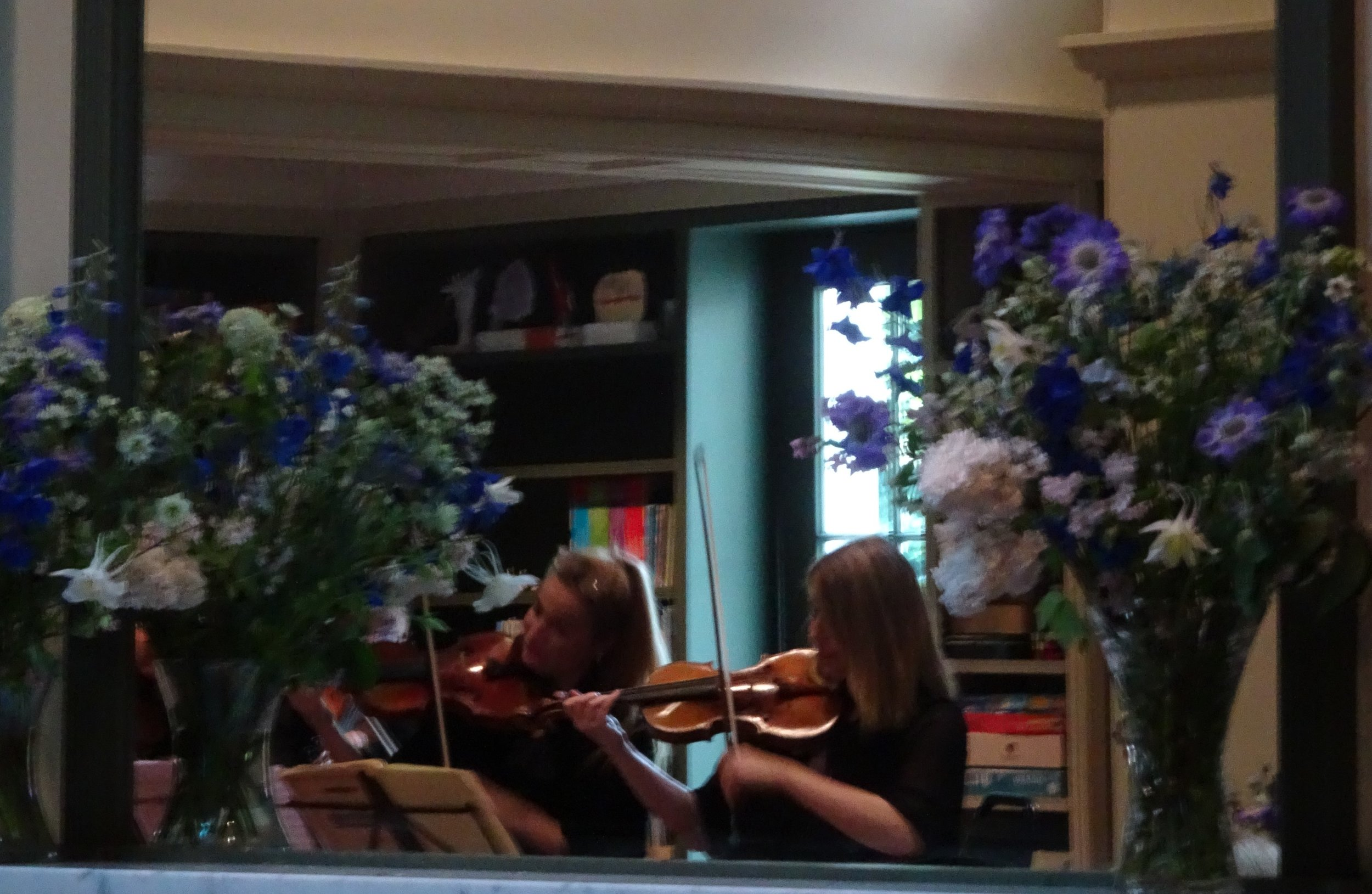 Violins and Flowers