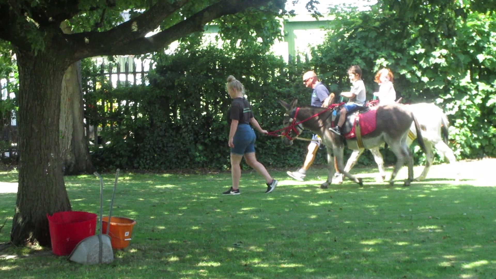 VP094E Rhyl Botanical Gardens Fun Day 2018 - 08.jpg