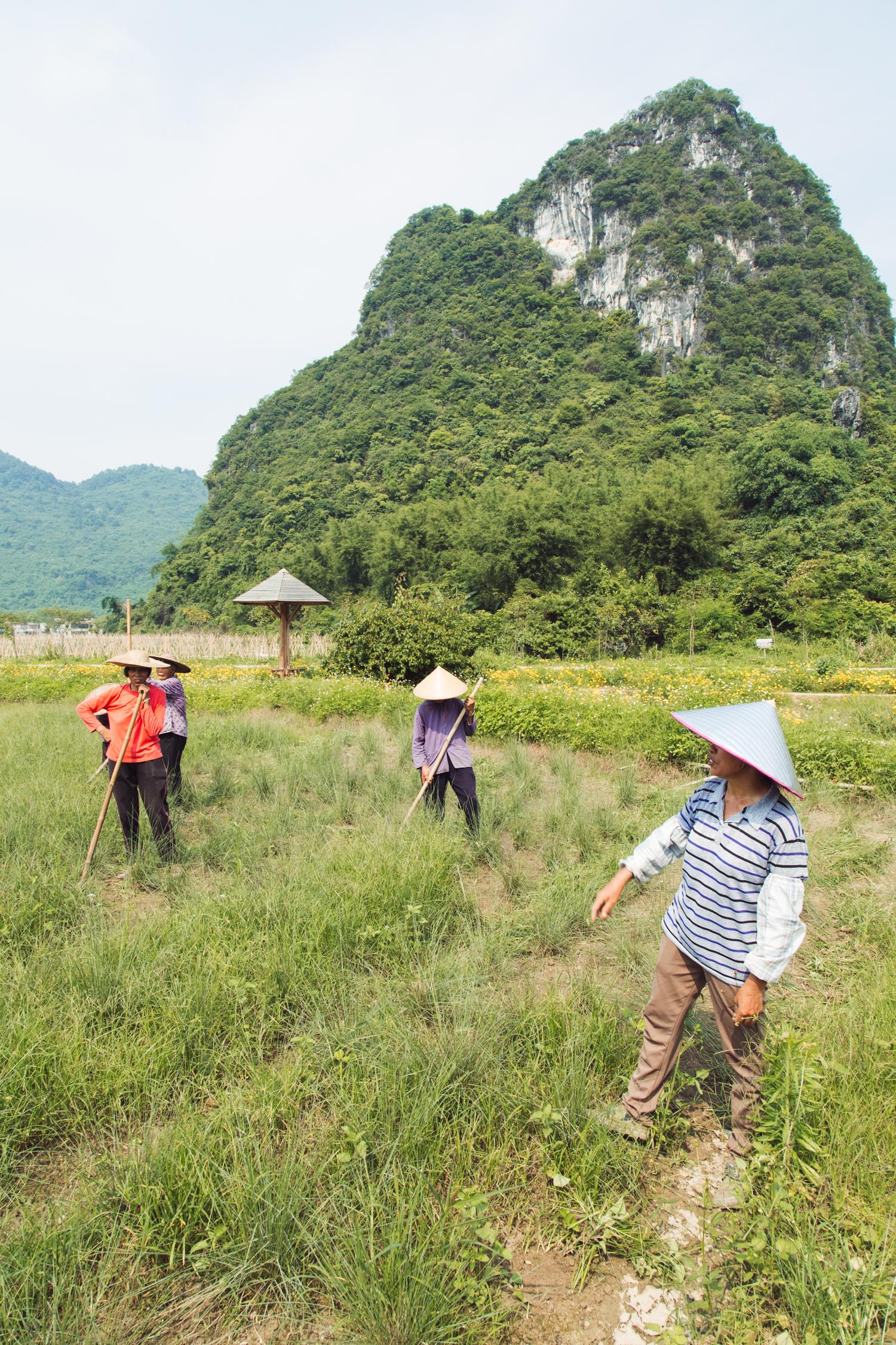 Corridor of Peaks in Western Yingde - Yingde, Qingyuan, Guangdong, China