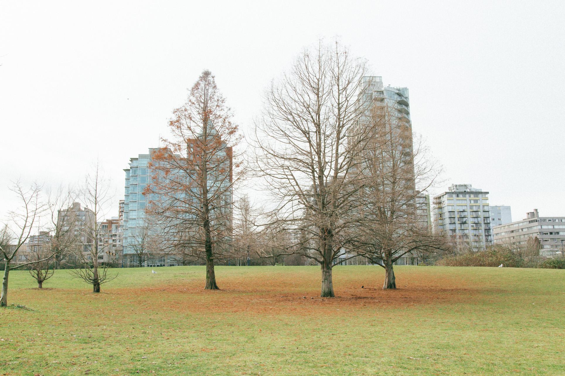 Vancouver-1-21.jpg